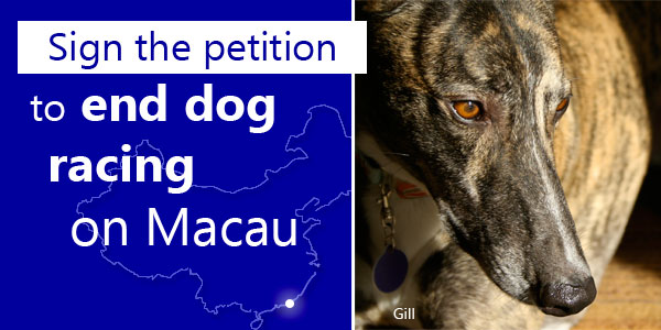 <br> Sign the petition to end dog racing in Macau