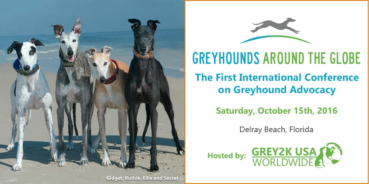 Greyhounds Around the Globe