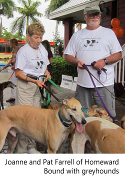 Homeward Bound Greyhounds