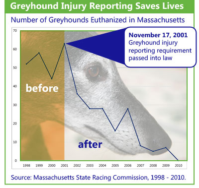 injury reporting saves lives