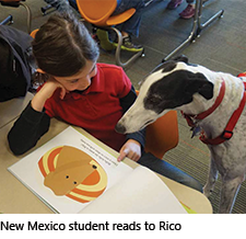 A student reads to Rico the greyhound