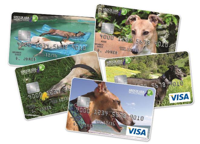 Greyhound visa credit cards