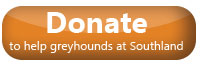 donate to help greyhounds at Southland