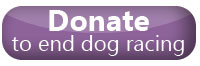 Donate to end dog racing