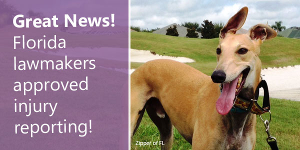 Great News! Florida lawmakers approved injury reporting!