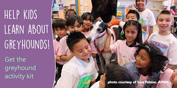 A student gets kisses from Rico the Greyhound