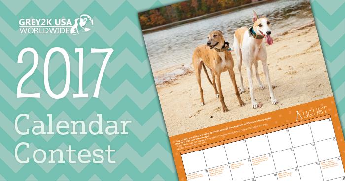 2017 Calendar Contest