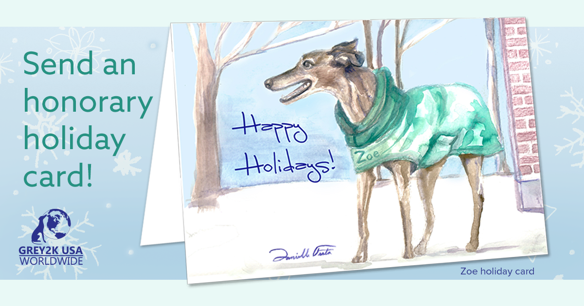 Send an honorary card that helps greyhounds