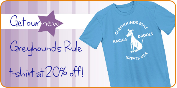 Get our new Greyhounds Rule t-shirt at 20% off!