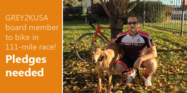 GREY2KUSA board member to bike in 111-mile race! Pledges needed