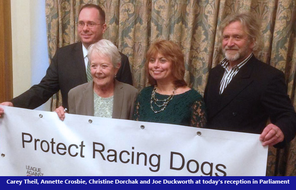 Breaking Report on Greyhound Racing in the UK