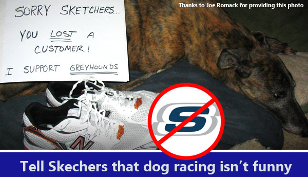 Tell Skechers that dog racing isn't funny