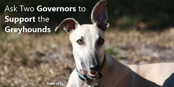 Ask Two Governors to Support the Greyhounds