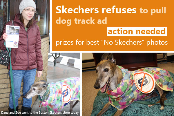 Skechers refuses to pull dog track ad; prizes for best