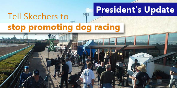 Tell Skechers to stop promoting dog racing