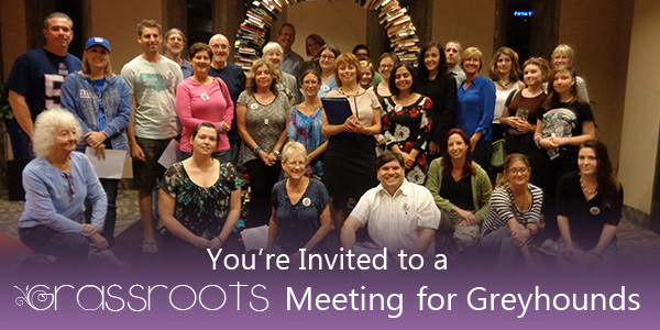 You're Invited to a Grassroots Meeting for Greyhounds