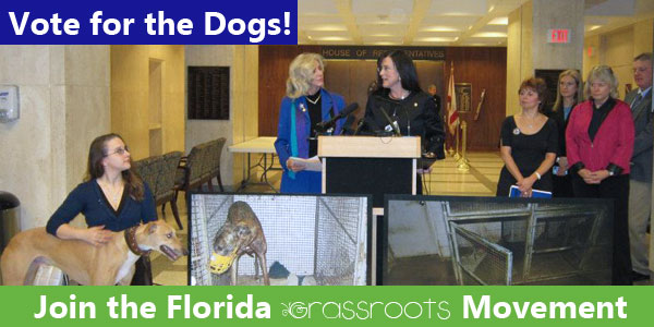 Ask your lawmakers to vote for the dogs