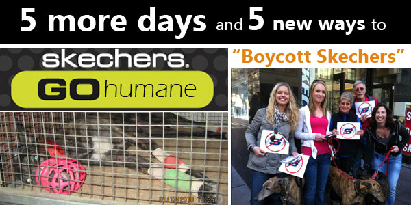 5 more days and 5 more ways to Boycott Skechers