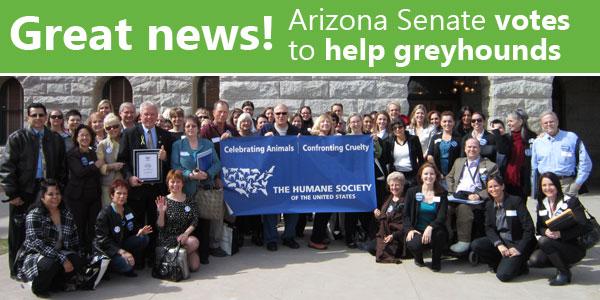 Great news! Arizona Senate votes to help greyhounds
