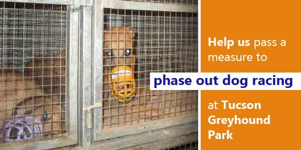 Bill filed to phase out dog racing at TGP