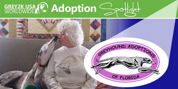 Adoption Spotlight: GAF