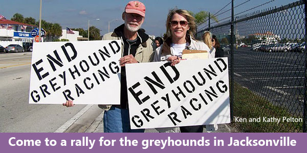 Come to a rally for the greyhounds in Jacksonville