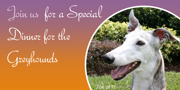 Join us for a Special Dinner for the Greyhounds