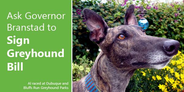 Ask Governor Branstad to Sign Greyhound Bill