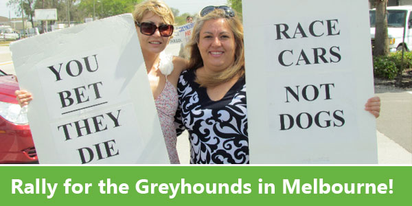 Rally for the Greyhounds in Melbourne!