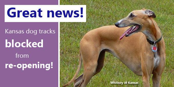 Great news!  Kansas dog tracks blocked from re-opening!