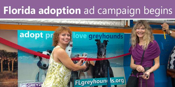 Florida adoption ad campaign begins