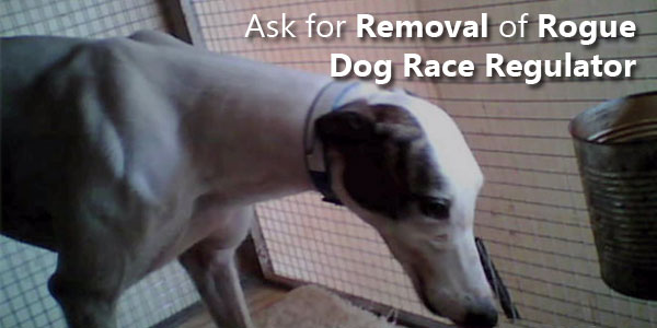 Ask for Removal of Rogue Dog Race Regulator