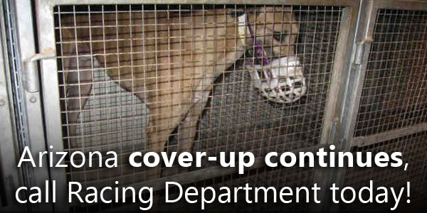 Arizona cover-up continues, call Racing Department today!