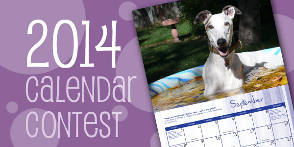 2014 calendar contest, make your dog part of history