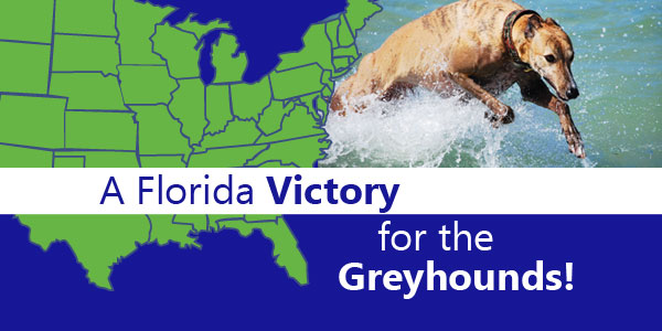 Florida sub-committee approves 																						greyhound bill, calls needed