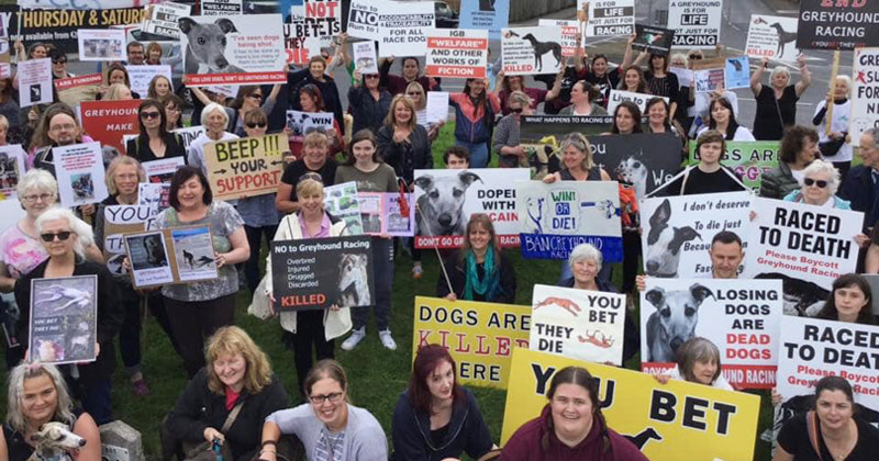 2019 protests against greyhound racing