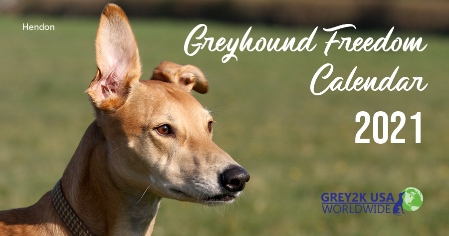 Greyhound Freedom Calendar | GREY2K USA Worldwide