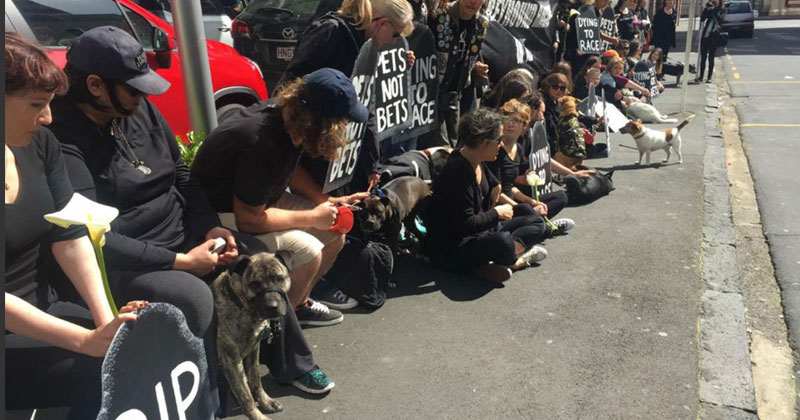 Protesters against greyhound racing in New-Zealand