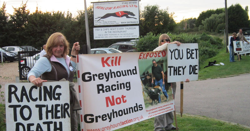 Protesters at the Henlow greyhound track in England