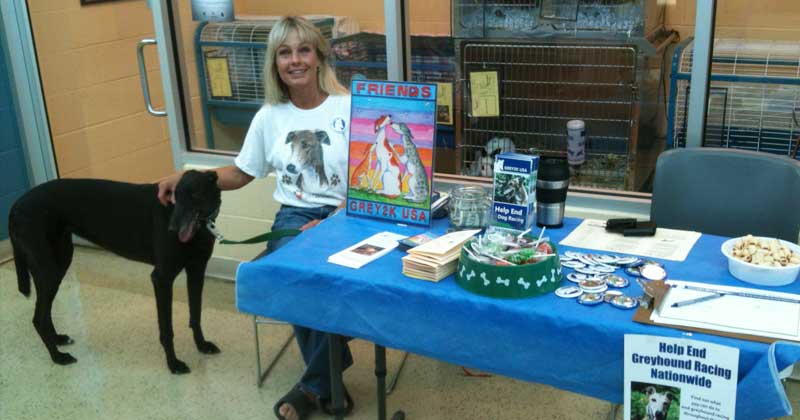 Susanna of Missouri hosts a table with her greyhound Sky.