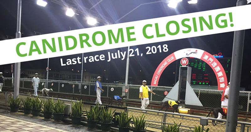 The last race at the Canidrome is scheduled for July 21, 2018