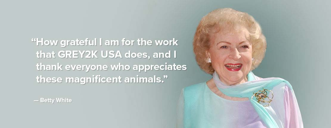 Betty White testimonial for GREY2K USA