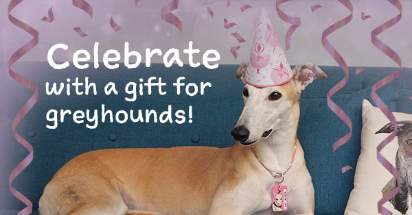 Celebrate your birthday with a fundraiser for greyhounds
