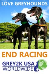 Love Greyhounds End Racing