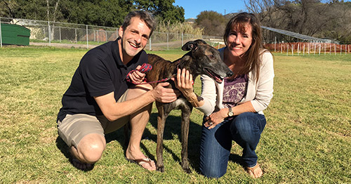 Robert and Jennifer with Cortland the greyhound