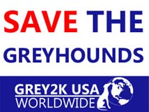 Save the Greyhounds