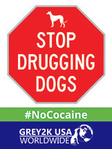 Stop Drugging Dogs