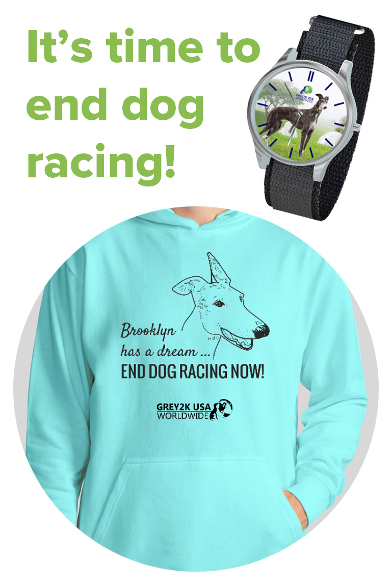 Greyhound Freedom watch and Brooklyn hoodie
