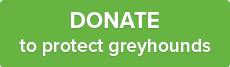 DONATE to protect greyhounds