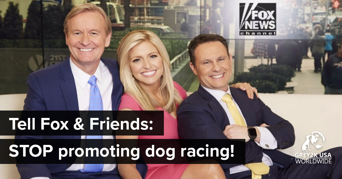 Fox and friends: stop promoting dog racing